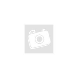 Nebuló Vonalzó, 16 cm-es, vegyes színek