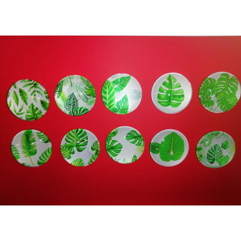 Üveg hűtőmágnes kaktuszlevelek